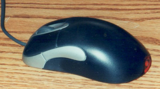 Painted mouse (side)